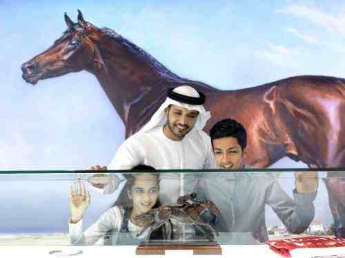 Interactive Display of Dubai and Its Horseracing Heritage