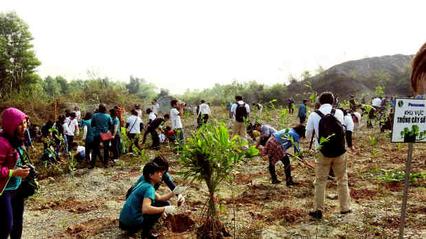 Vietnam: Tree planting activities in a National Wildlife Reserve in Ninh Bình Province.