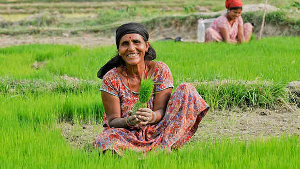 A woman farmer in Nepal. Photo: World Bank