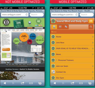 Mobile-Optimized Website