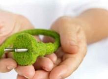SAP Green Cloud