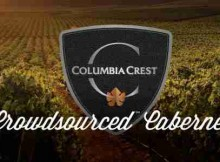 Wine–Lovers Invited to Become Virtual Winemakers