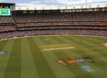 How SAP Brings Fans Closer to ICC Cricket World Cup