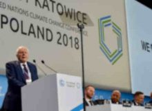 Sir David Attenborough has announced the United Nations' launch of a new campaign enabling individuals the world over to unite in actions to battle climate change.