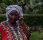 How Digital Technology Helps Farmers Respond to Covid-19 Pandemic. Photo: IFAD / Edward Echwalu